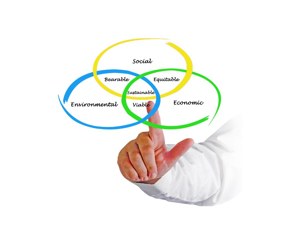 Sustainability Strategy Development