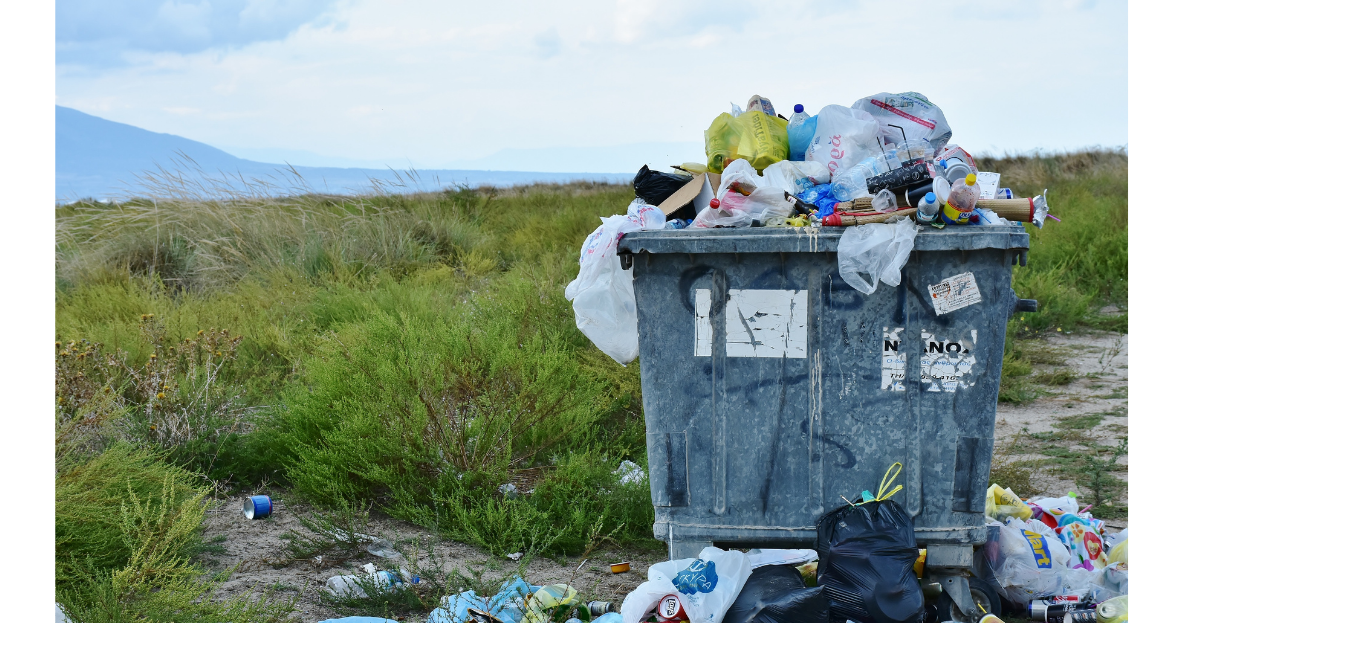 Waste Management & Circular Economy – Part A'